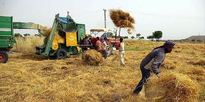 Çiftçiler 14 Mayıs'ta Ankara'da buluşacak