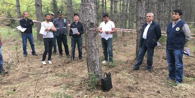 Ormanlık alanda eğitim semineri