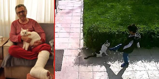 Kediyi tekmelemek isteyen çocuğu uyardığı için dayak yedi