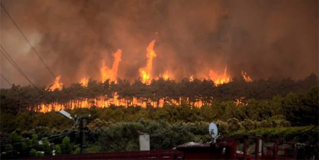 Yaz geldi orman yangınları başladı
