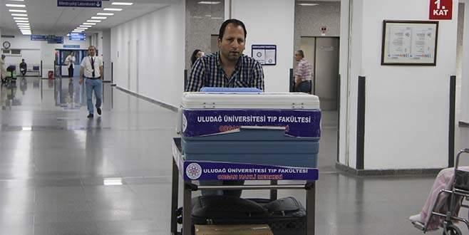 Bursa'da 2 hastaya böbrek 1 hastaya karaciğer müjdesi
