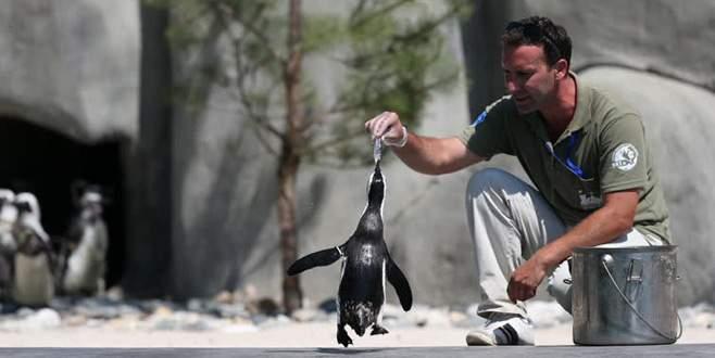 Bursa Hayvanat Bahçesi'ne bayram tatilinde yoğun ilgi