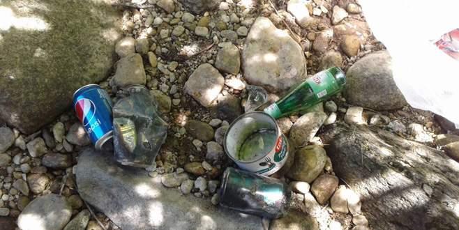 Piknikçiler Uludağ'ı çöplüğe çeviriyor