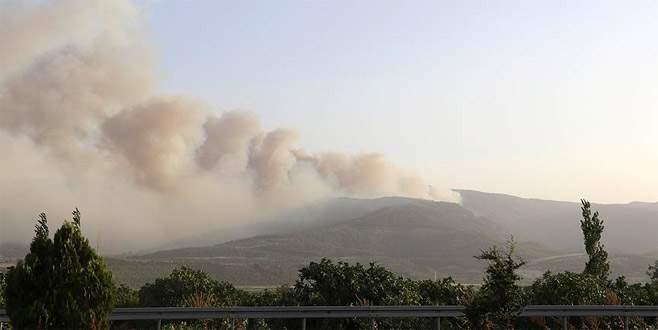 Denizli'de orman yangını nedeniyle 3 mahalle boşaltıldı