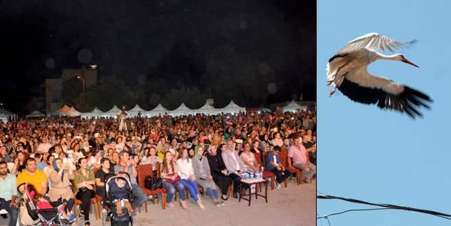 'Leylek Festivali'ne ilgi büyüktü
