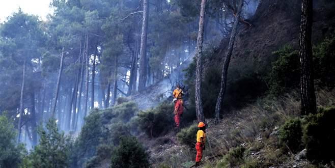 Antalya'da alev alan otobüsteki yangın ormana sıçradı
