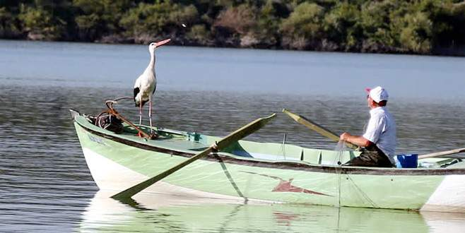 Balıkçı Adem ile leylek Yaren'in 6 yıllık dostluğu