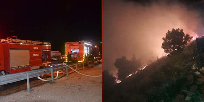 Mudanya'da makilik alanda yangın