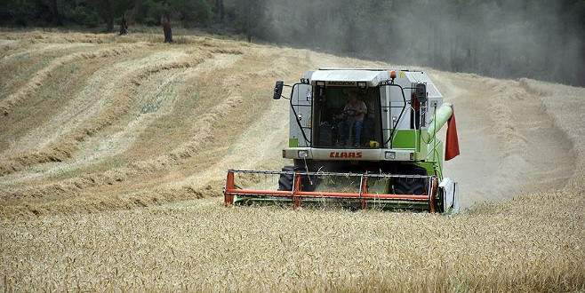'Buğday rekoltesinde yüzde 25-30 artış bekliyoruz'