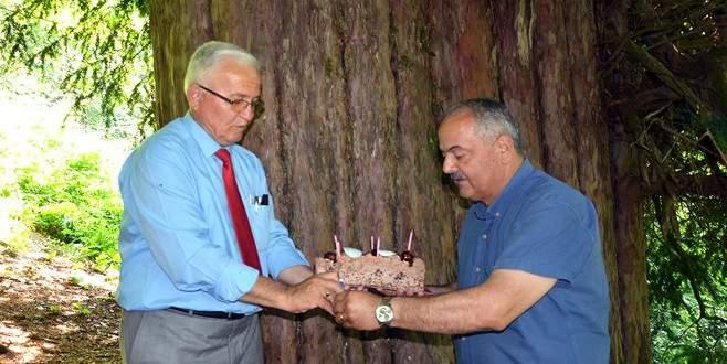 En yaşlı porsuk ağacına doğum günü kutlaması
