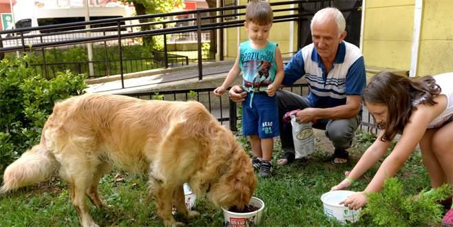 Bursa'da can dostlar için her köşeye bir kap su