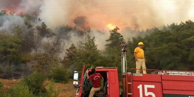 İzmir'de orman yangını: Saatlerdir devam ediyor