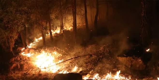 Dev yangın yaklaşık 40 saattir sürüyor