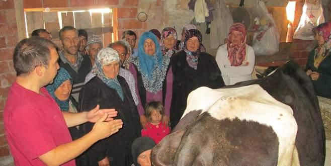 Büyükorhan'da süt sığırcılığı kursu