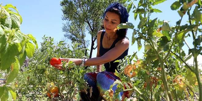 Tatilcilerin yeni gözdesi 'ekolojik turizm'