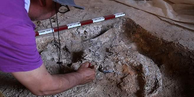 Karain Mağarası'nda 350 bin yıllık kemik parçaları bulundu