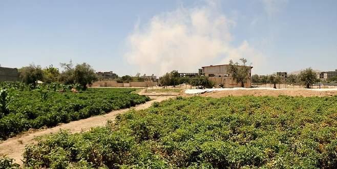 Doğu Guta kuşatmayı tarımla kırıyor