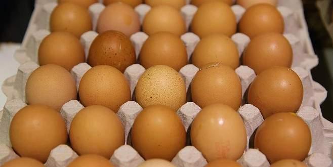 Belçika yumurta krizinde Hollanda'yı suçladı