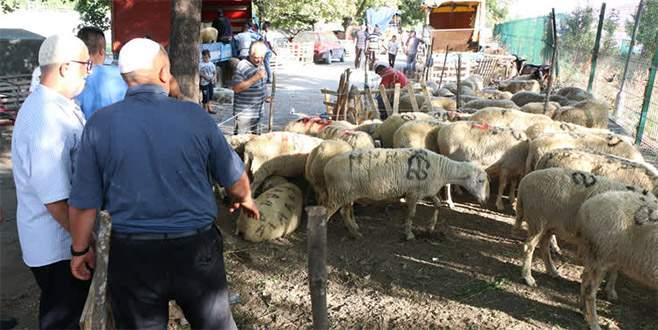 Balkanlar'da Kurban Bayramı'na doğru