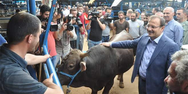 Çavuşoğlu Bursa'da hayvan pazarını gezdi
