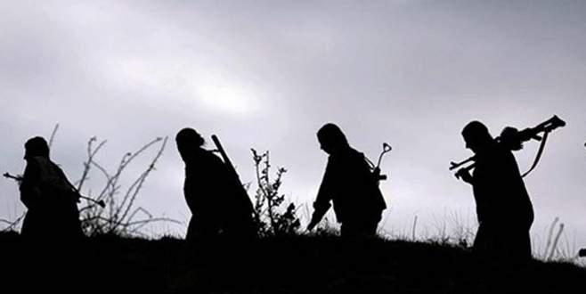 Van, Muş ve Erzincan'da 7 terörist öldürüldü
