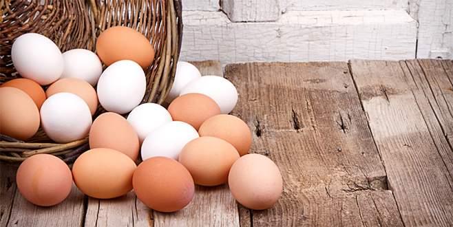 Türkiye'de yumurtalar temiz çıktı