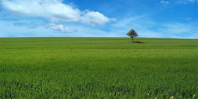 2B ve tarım arazilerinde son başvuru 7 Eylül