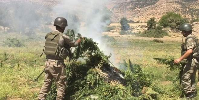 Diyarbakır'da 'Bayrak-58 Şehit Jandarma Binbaşı Ümit Çelik' operasyonu