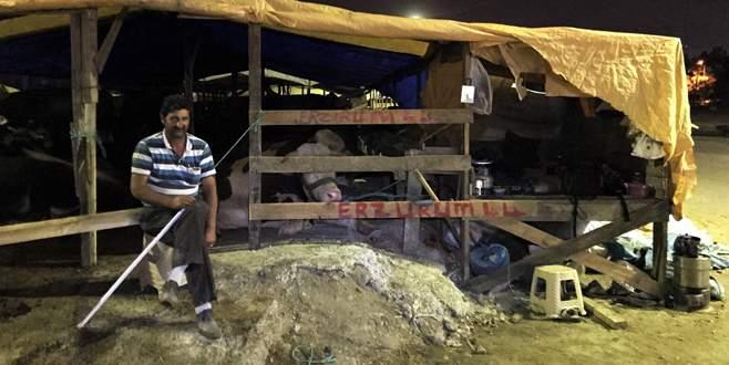 Bursa'da büyük korku! Koyun koyuna uyuyorlar