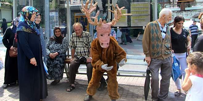 Bursa'da otobüste bir geyik