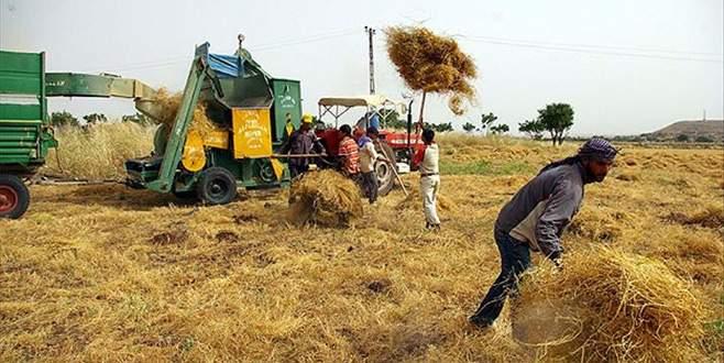 İstihdamda tarım sanayiyi geçti