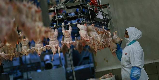 Zeybekci'den kanatlı sektörüne Japonya müjdesi