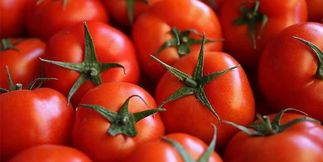 Rusya'dan domatese karşı et şartı