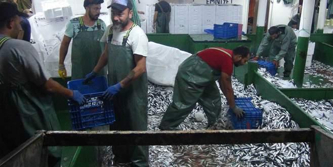1 tekneyle 2 saatte 1250 kasa balık