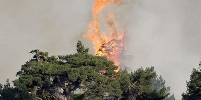 Kütahya'daki yangın kontrol altında