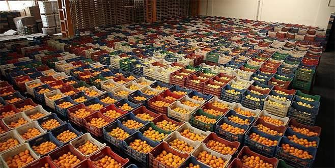 Gıda fiyatlarına ambalaj ve hal önlemi