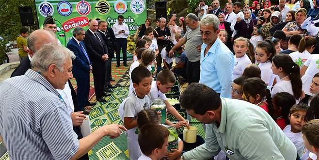 Bursa'da çocuklarla turşu kurma rekoru kırıldı
