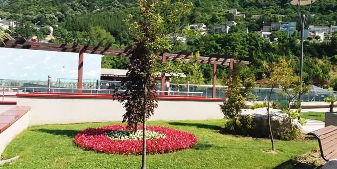 Parkları mevsimlik çiçekler süslüyor