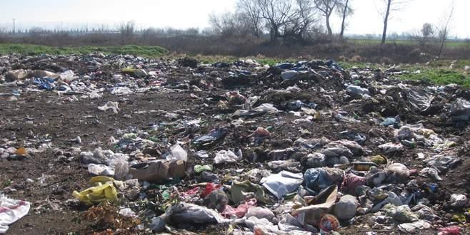 Çöplükler yeşil alan oluyor