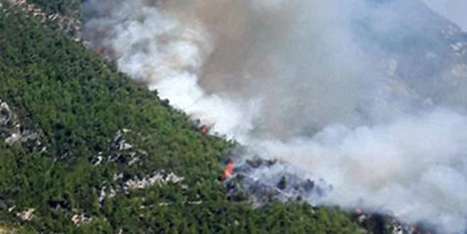 Orman yangını köye sıçradı: 30'a yakın ev yandı!