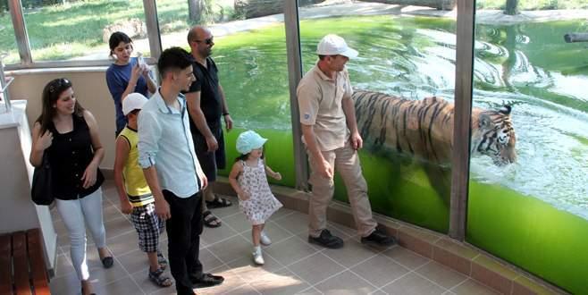 Hayvanat bahçesine bayram tatilinde yoğun ilgi