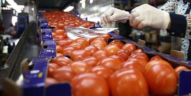 'Rusya'ya domates ihracatında eskiyi yakalayabiliriz'
