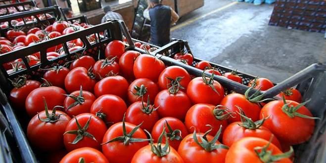 Rusya'dan domatese yeşil ışık!