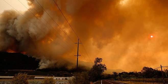 Orman yangınları 6 bine yakın binayı tahrip etti