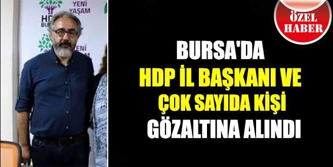 Bursa'da HDP İl Başkanı ve çok sayıda kişiye gözaltı