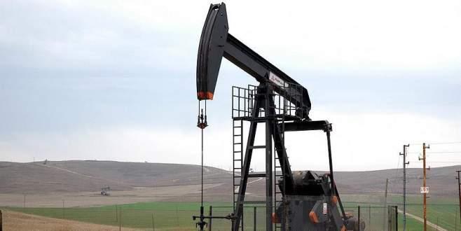 TPAO'nun petrol işletme ruhsatının süresi uzatıldı