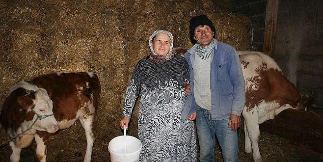 TİKA'nın Kosova'daki Tarımsal Kalkınma Programı meyvelerini veriyor
