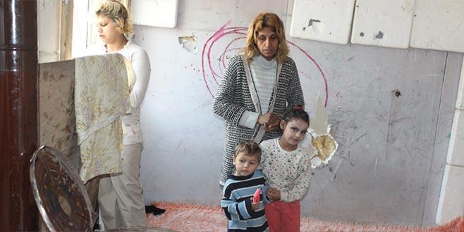 7 kişilik aileden barakada hayatta kalma mücadelesi