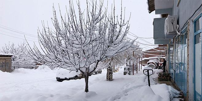 Kar ilçeyi kapladı, yollar kapandı, elektrikler gitti