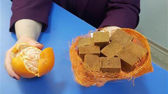 Türk doktordan müthiş buluş! Mandalina kabuğundan ürettiler